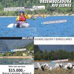 guiado kayak bahia y desembocadura-02