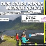tour-queulat1-01